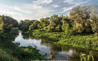 #EKOLOGIA: Od operacji czysta rzeka do zielonych finansów i ekoprzedsiębiorczości