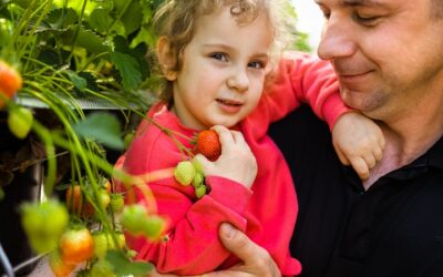 #LIFESTYLE: Zdrowa dieta na dobre myślenie i poprawę odporności