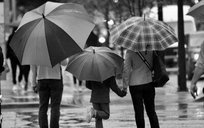 Fundacja rodzinna a sukcesja biznesu | Konsultacje projektu ustawy